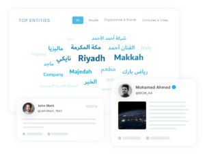 Discovering the top keywords for an influencer in Lucidya